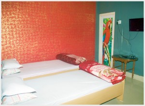 hotel-paying-guest-jalpaiguri-room-21